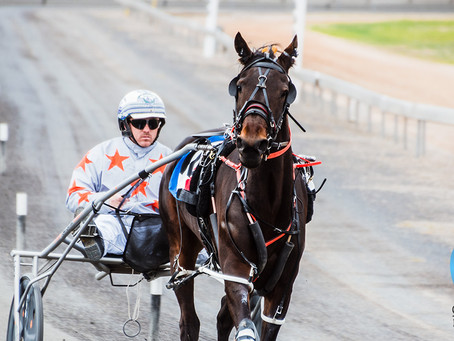 08 July 2018 Harness Racing Photos at Parkes Harness Are Now Available.