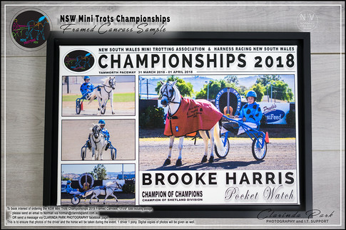 NSW Mini Trotting Championships Photos