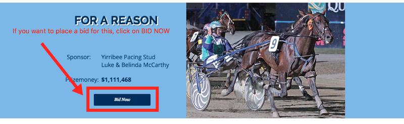 Parkes Harness Racing Club Stallion Tender 2016