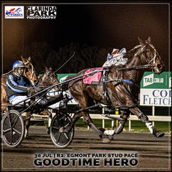 GOODTIME HERO, driven by Tom Pay, won at the Parkes Trots