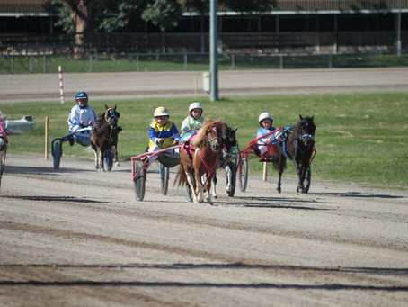 Interest To Submit Articles for Capital Region Mini Trotting Club, Send Us A Message