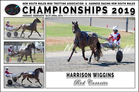 WIGGINS Harrison - Red Corvette - 000
