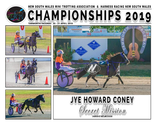 NSW Mini Trots Championship 2019 Champion of Champions - Secret Mission driven by Jye Howard-Coney