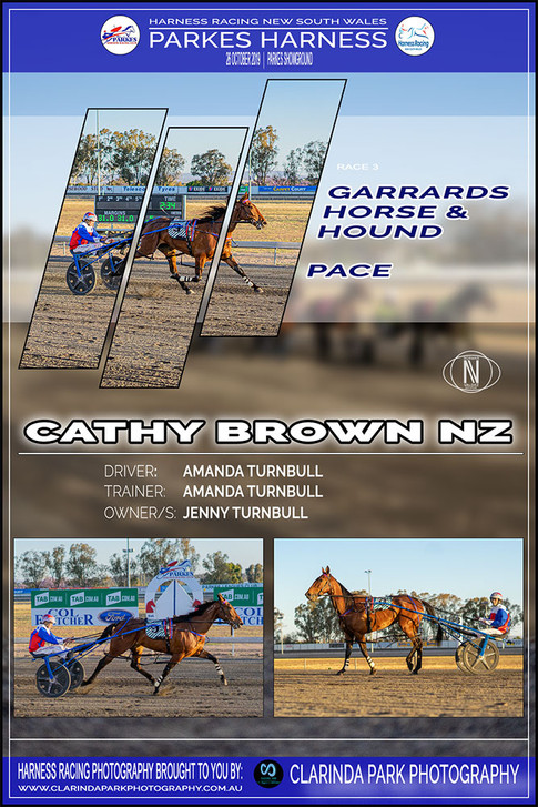 CATHY BRON NZ wins at Parkes Harness