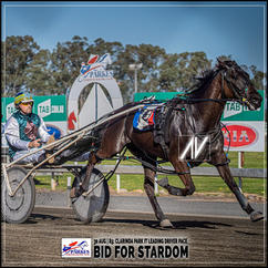 BID FOR STARDOM, driven by James Sutton, wins at Parkes Trots last 30 August 2020