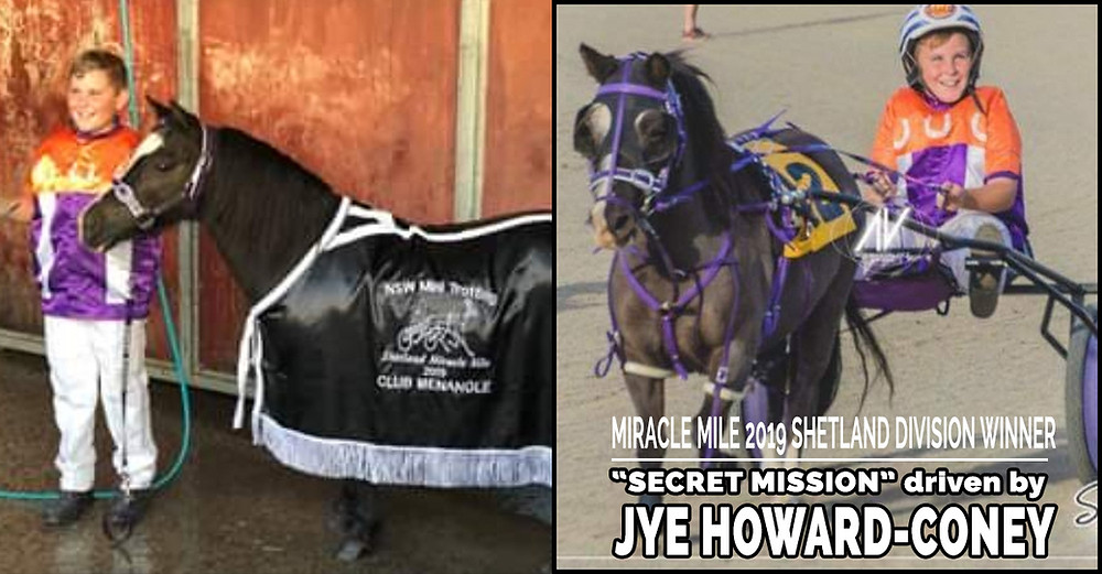 NSW Mini Trots Miracle Mile 2019 Shetland Division Winner - SECRET MISSION driven by JYE HOWARD-CONEY