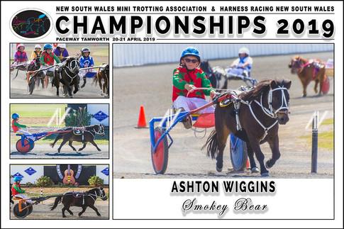 WIGGINS Ashton - Smokey Bear - 000