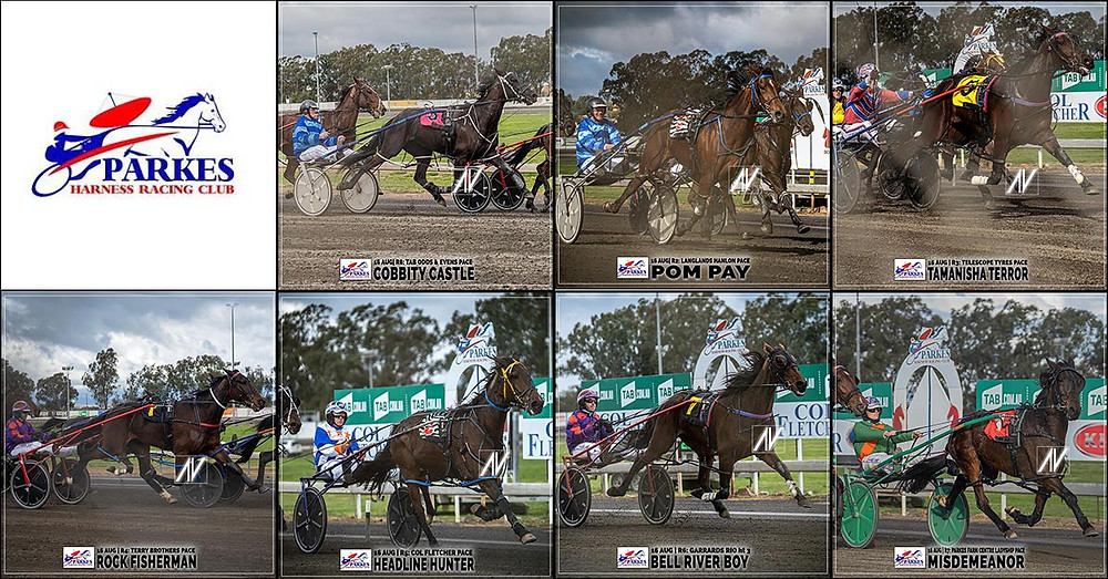PARKES HARNESS Racing Club winners on 16 August 2020: COBBITY CASTLE - POM PAY - TAMANISHA TERROR - ROCK FISHERMAN - HEADLINE HUNTER - BELL RIVER BOY - MISDEMEANOR