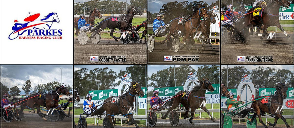 Congratulations to PARKES HARNESS Racing Club Race Meeting Winners - 16 AUGUST 2020