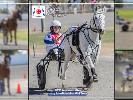 Chloe Represents NSW for the 2019 InterDominion Mini Trots