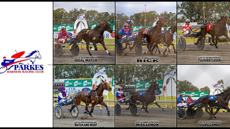 Congratulations to PARKES HARNESS Racing Club Race Meeting Winners - 25 October 2020