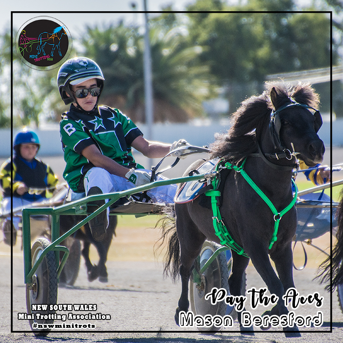 Pay The Aces will be driven by Mason Beresford in the midget division of Mini Trots Inter Dominion 2018 to be held at Melton Victoria on 15 December 2018.  NSW Mini Trotting Association (NSWMTA) and Harness Racing New South Wales (HRNSW) supports the members that would be competing in the Mini Trots Inter Dominion 2018.