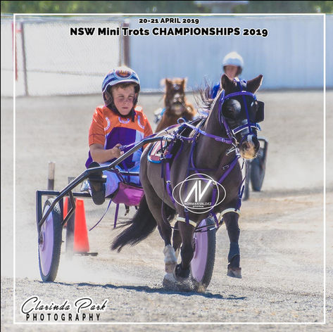 New South Wales Mini Trots Association Championships 2019 - Jye Howard Coney with Secret Mission