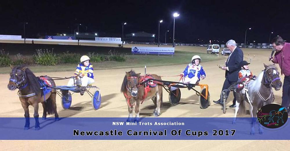 NSW Mini Trots. Newcastle Carnival Of Cups 2017