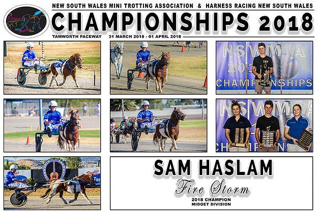 NSW Mini Trots Championships 2018 - Midget Champion - Fire Storm driven by Sam Haslam