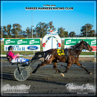 12 MAY 2019 - Parkes Harness Racing Club - Kamwood Izzy driven by Ross Druitt