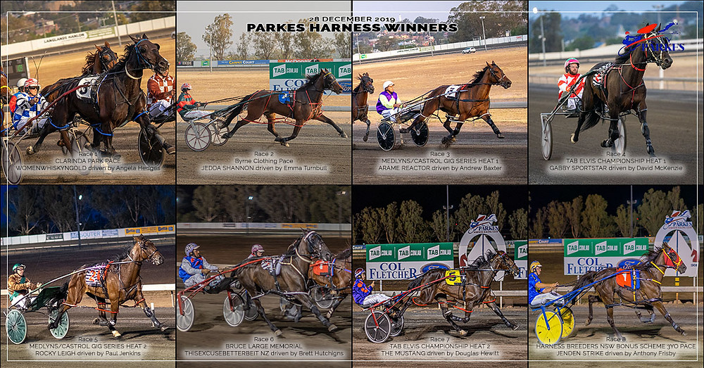 PARKES HARNESS Racing Club winners on 28 December 2019: Womenwhiskyngold - Jedda Shannon - Arama Reactor - Gabby Sportstar - Rocky Leigh - Thisexcusebetterbeit NZ - The Mustang - Jenden Strike