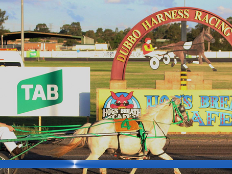 Dubbo Mini Trots Holds 1st Meeting This Sunday