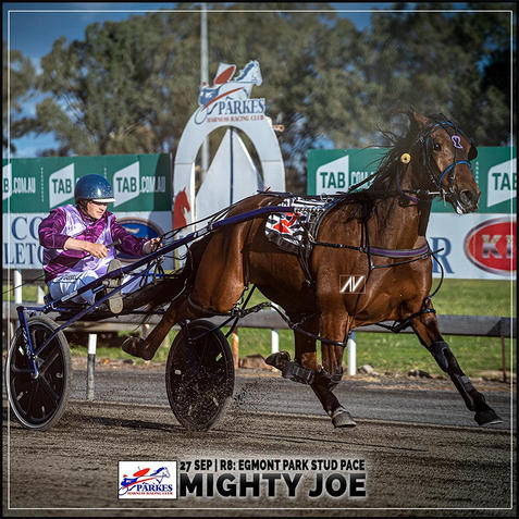 MIGHTY JOE, driven by William Cassell, wins at Parkes Harness