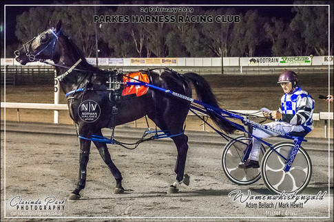 R8 GET REAL SUPPORT TEAL 3YO COLTS AND GELDING Pace - WOMENWHISKYNGOLD - Mark Hewitt - 105