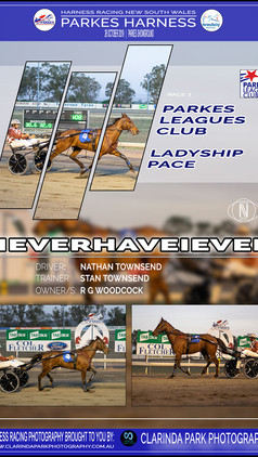 NEVERHAVEIEVER wins at Parkes Harness Trots