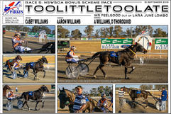 RACE 5: NSWSOA BONUS SCHEM PACE. Toolittletoolate wins at Parkes Harness Trots