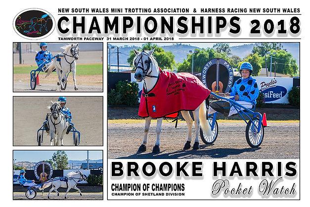 NSW Mini Trots Championships 2018 - Champion of Champions - POCKET WATCH driven by Brooke Harris