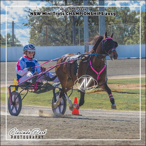 New South Wales Mini Trots Association Championships 2019 - Grace Panella with Velvets Little Star