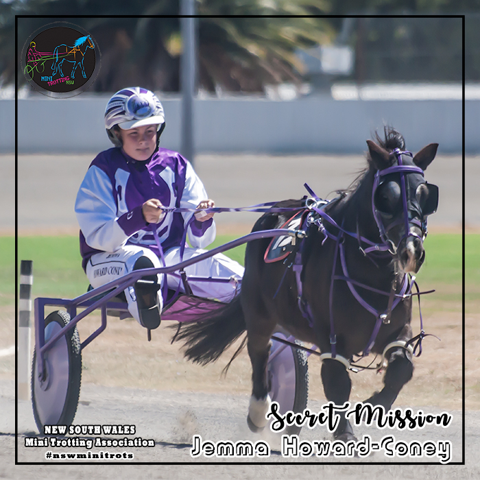 Secret Mission will be driven by Jemma Howard-Coney in the Shetland division of Mini Trots Inter Dominion 2018 to be held at Melton Victoria on 15 December 2018.  NSW Mini Trotting Association (NSWMTA) and Harness Racing New South Wales (HRNSW) supports the members that would be competing in the Mini Trots Inter Dominion 2018.