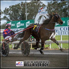BELL RIVER BOY, driven by Doug Hewitt, wins at Parkes Trots last 16 August 2020