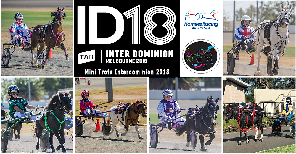 UPDATED: NSW Mini Trots Releases Names of Representatives to drive in Mini Trots Inter Dominion 2018 at ID18 Melton Victoria