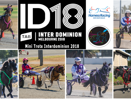 UPDATE: NSW Mini Trots Releases Its Representatives for Inter Dominion 2018