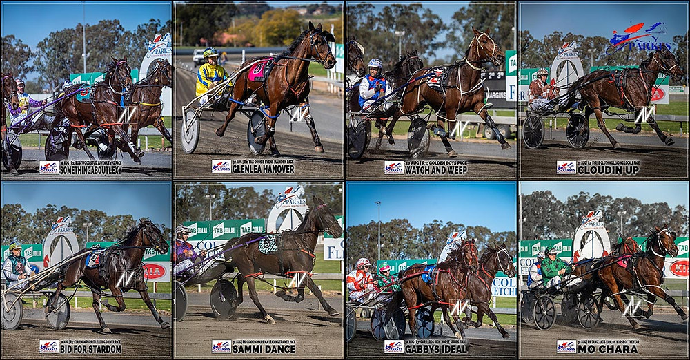 PARKES HARNESS Racing Club winners on 30 August 2020: SOMETHINGABOUTLEXY - GLENLEA HANOVER - WATCH AND WEEP - CLOUDIN UP - BID FOR STARDOM - SAM