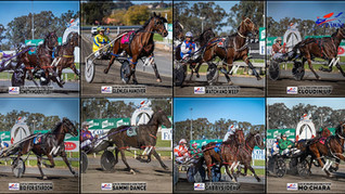 Congratulations to PARKES HARNESS Racing Club Race Meeting Winners - 30 AUGUST 2020