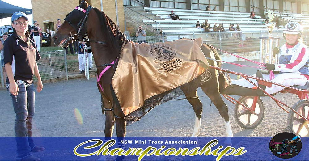 Garrard Horse and Hound Pony Division winner Velvets Little Star driver Grace Panella attendant Ashleigh Jackson. NSW Mini Trots Championships 2017.