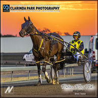 31 DECEMBER 2019 - Parkes Harness Racing Club Race Meeting - Rubies For Tash driven and trained by Bruce Harpley.