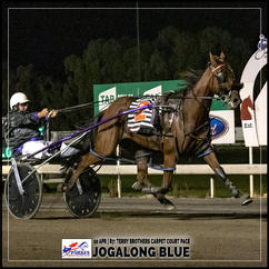 JOGALONG BLUE, driven by Greg Lew, won at the Parkes Trots