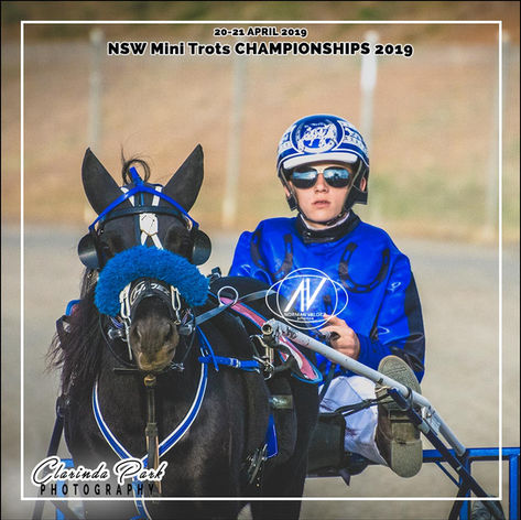 New South Wales Mini Trots Association Championships 2019 - Seaton Grima with The Dark Horse