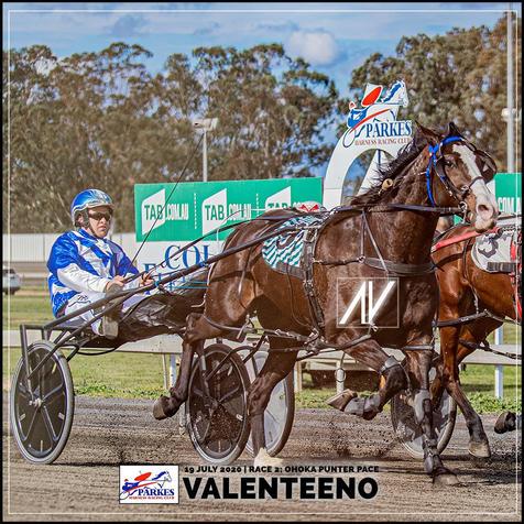 VALENTEENO, driven by Tom Pay, wins at Parkes Trots last 19 July 2020