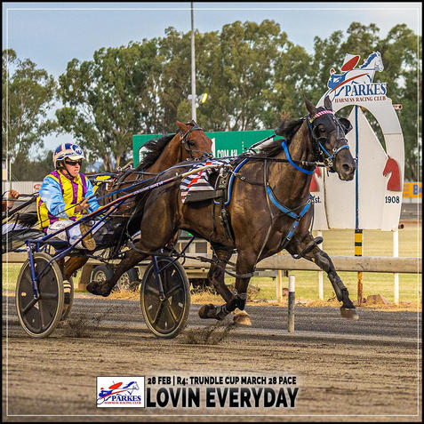 LOVIN EVERYDAY, driven by Justin Reynolds, won at the Parkes Trots