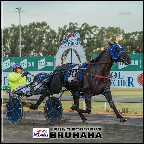 BRUHAHA wins at Parkes Trots