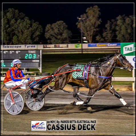 CASSIUS DECK, driven by Steve Turnbull, wins at Parkes Harness