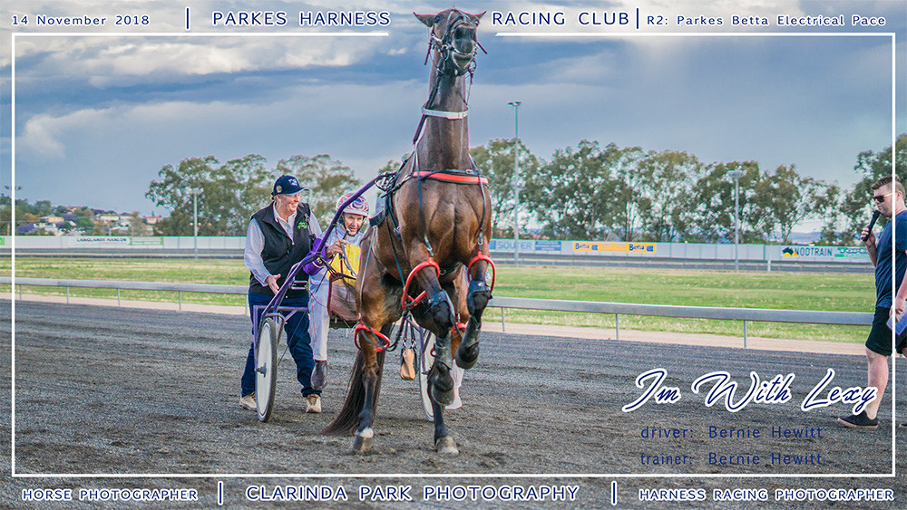 Parkes Harness | 14 November 2018 | Race 2 Parkes Betta Electrical Pace winner | Im With Lexy | Harness Racing Photos | Horse Photographer | Clarinda Park Photography