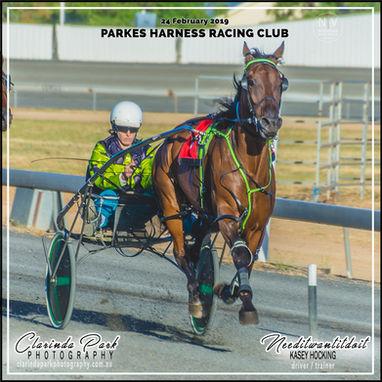 24 FEBRUARY 2019 - Parkes Harness Race 2 Kasey Hocking with Needitwantitdoit