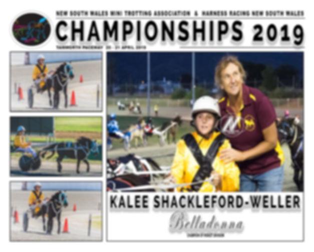 NSW Mini Trots Championship 2019 Midget Champion - Belladonna driven by Kalee Shackleford-Weller