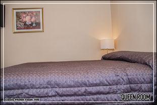 Oasis Motel Peak Hill - Queen Room - 012