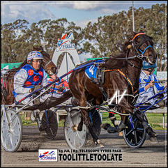TOOLITTLETOOLATE, driven by Brett Hutchings, wins at Parkes Trots last 19 July 2020