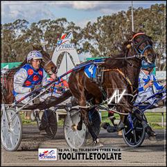 TOOLITTLETOOLATE, driven by Brett Hutchings, wins at Parkes Trots last 19 July 2020
