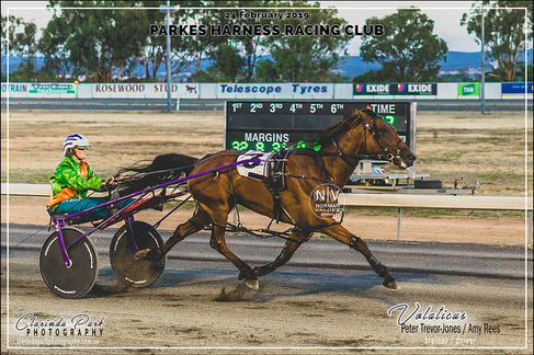 Race 4 - TERRY BROTHERS CARPET COURT Pace - VOLATICUS - Amy Rees