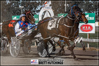 BRETT HUTCHINGS - Byrne Clothing Leading Local Driver Of The Year 2020